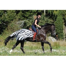 Bucas Buzz Off Zebra Fly Exercise Sheet