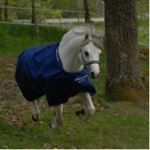 Bucas Smartex Rain Pony Turnout Rug