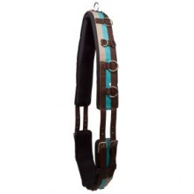 Imperial Riding Deluxe Nylon Lunge Roller (Dark Brown/ Teal)