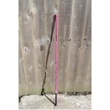 IV Horse Junior/Small Adult Lunge Whip (Pink)