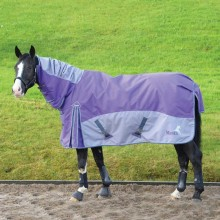 Masta Fieldmasta 100G Fixed Neck Turnout Rug SS18 (Purple/Grey)